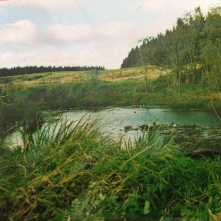 Den bundløse dam